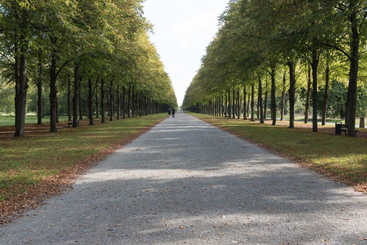 Zu sehen ist die fast zwei Kilometer lange Lindenallee in Herrenhausen.